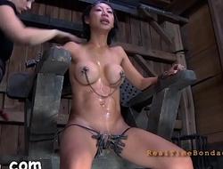 Wild torture for bitch